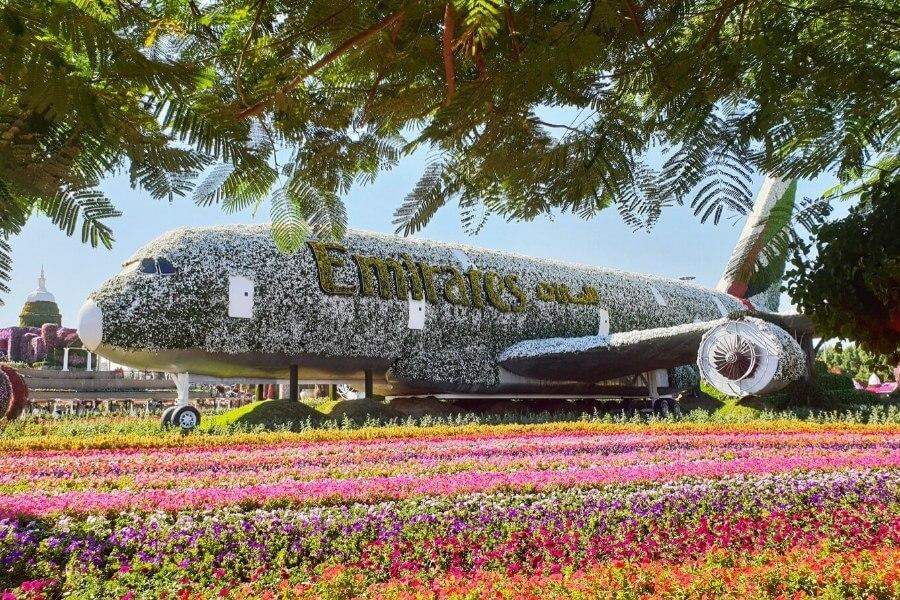Dubai Miracle Garden Floral A380 Plane