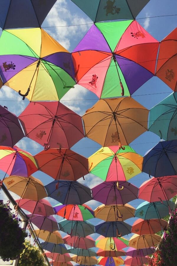 Dubai Miracle Garden - umbrella walkway