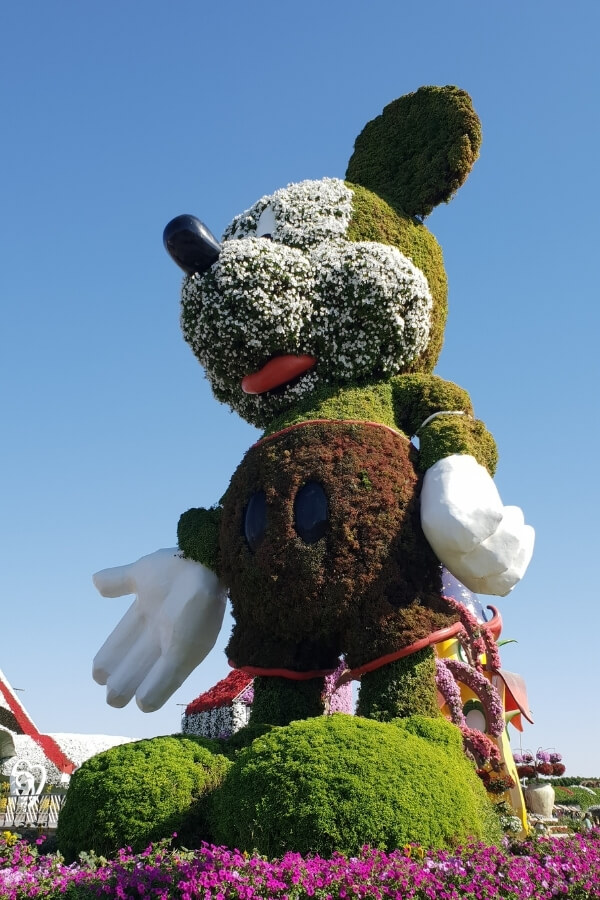 Dubai Miracle Garden - giant Mickey Mouse 90th Birthday trubute