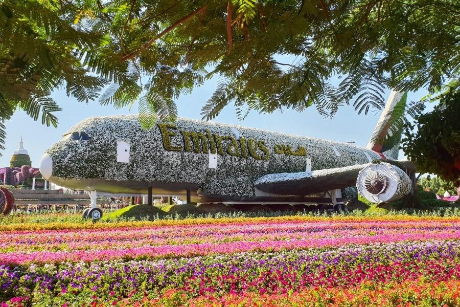 Dubai Miracle Garden - Emirates Floral Airplane