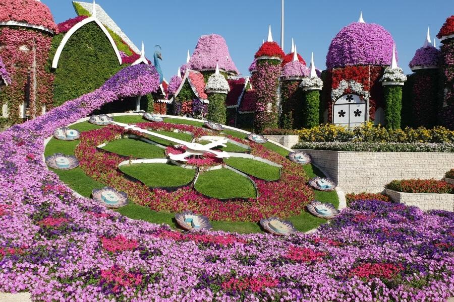 Dubai Miracle Garden - floral clock