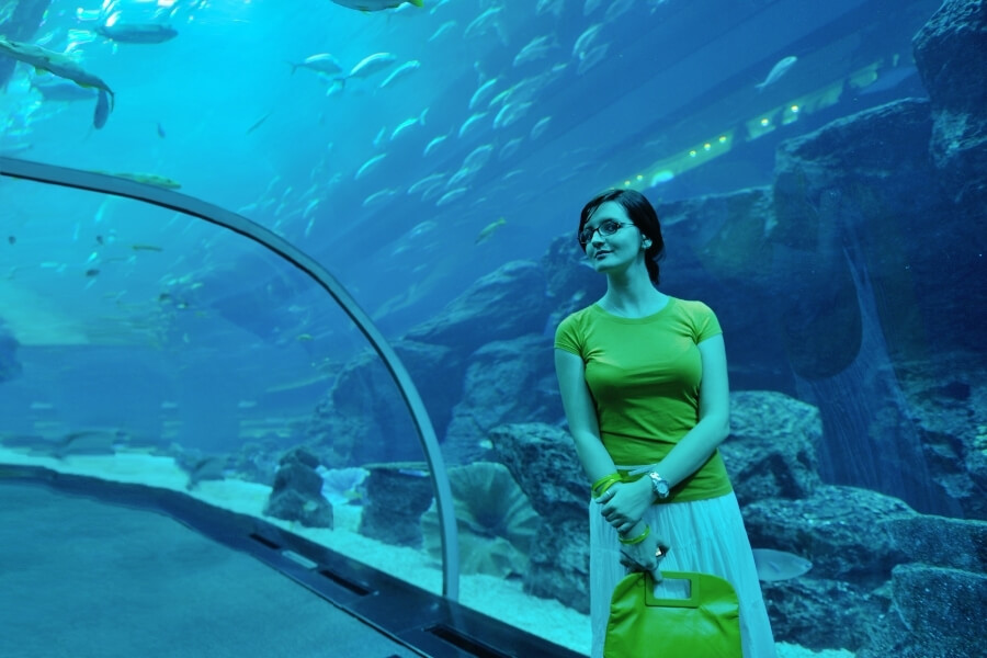 Woman standing in the tunnel of Dubai Mall Aquarium