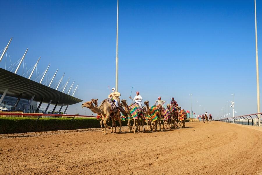 Xamels practising at the Al Marmoom track - Dubai Racing Club
